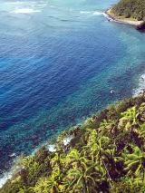 Solo traveller Lord Howe Island with return flights