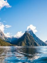 19 day New Zealand rail, cruise and coach holiday