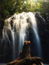 Cairns to Cobbold Gorge with return flights
