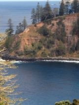 Norfolk Island Whispering Pines Cottages with return flights